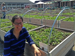 Adeline, our new Food Project Coordinator, at the Eastdale Collegiate Institute's rooftop garden