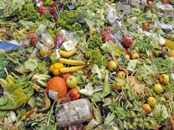 Food Waste. image credit bbotpledge.ca/just-eat-it-a-food-waste-story