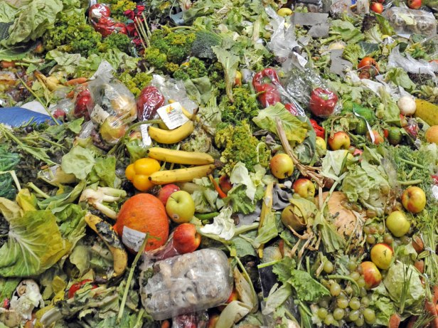 Food Waste. image credit bbotpledge.ca/just-eat-it-a-food-waste-story