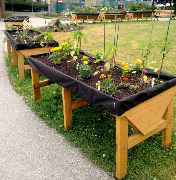 Look how gorgeous these wheelchair accessible planters are ... sprinklings of marigolds help keep the mosquitoes away