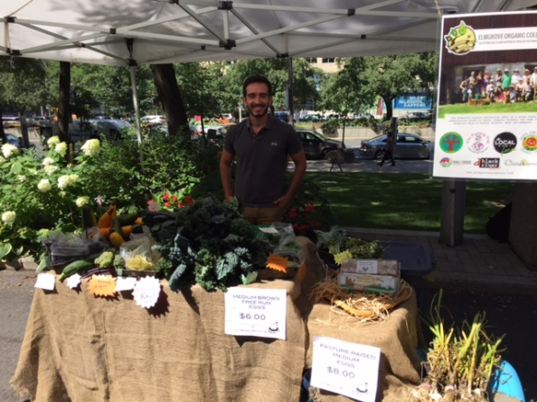 The Farmers Market is a great way to buy and eat local veggies.