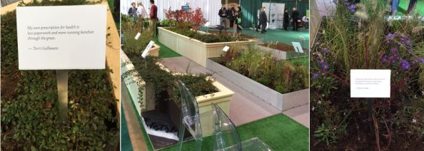 Healing Garden on the Healthy Green Promenade
