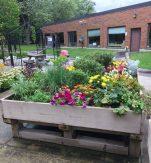 Lyndhurst Garden in full bloom. Image credit Adeline Cohen
