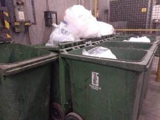 Additional Recycling Bins