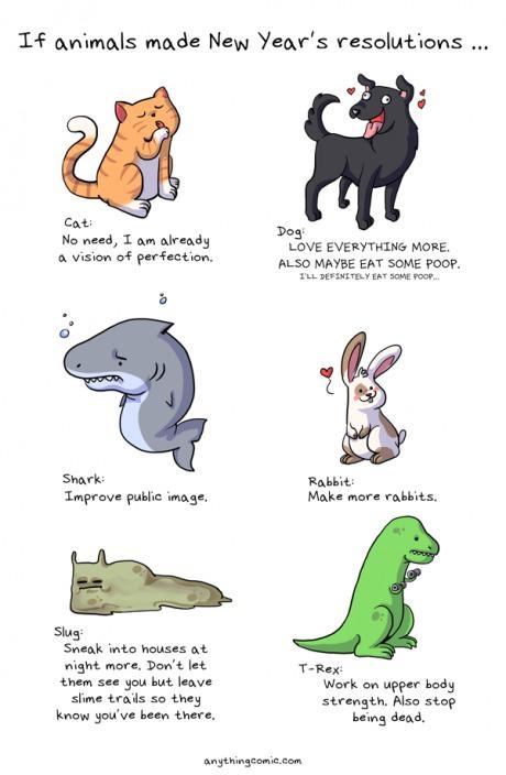 funny-picture-animals-new-years-resolutions-wannajokedotcom
