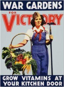 victory garden 2