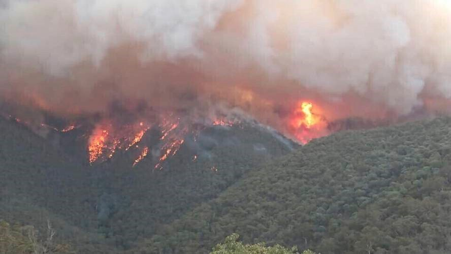 Image result for australia wildfires pictures